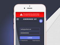 Mobile UI - Login Error