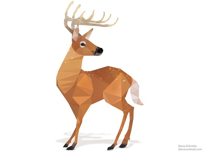 Low Poly White-Tailed Deer.