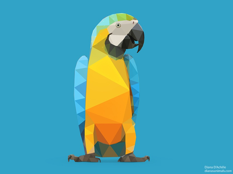 low poly blue and yellow macao parrot