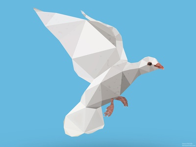 Low Poly Dove
