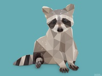Low Poly Racoon.