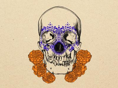 Skullcandy full version artwork skullcandy skull texture brushes illustration