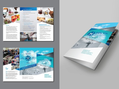 Brochure for PPS. Co.