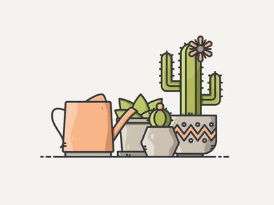 Succulent Scene