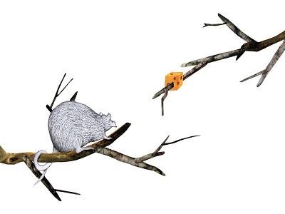 Rat rat animals cutout editorial paper collage analog illustration