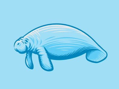 Manatee Illustration floaty potato wildlife zoo water manatee mammal florida ocean sea