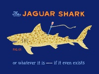 The Jaguar Shark [or whatever it is]