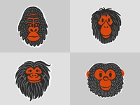 More Monkey Heads