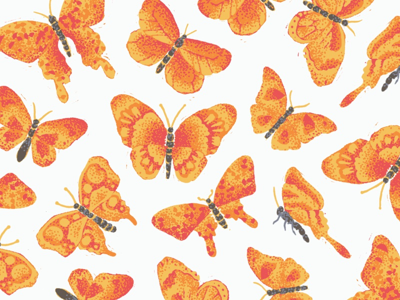Butterfly Swarm repeat pattern zoology science flying monarch fall orange butterfly insect nature