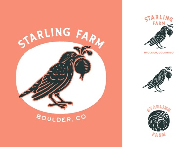 Starling Farm Logo System raven crow symbol icon monogram illustration vintage farm bird logo