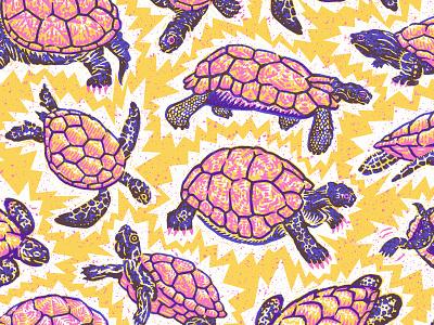 Turtle Party! marine aquatic reptile zoo aquarium sea turtle tortoise nature turtle happy bright