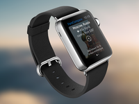 Smart Travel for Apple Watch