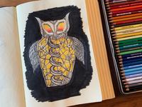 Robo-owl