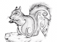 Pen and ink illustration of a squirrel drawn in stipple dots