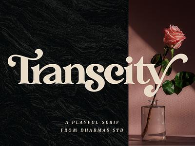 Transcity - A Playful Serif layout web classy magazine logo branding feminine fonts 80s font 70s font vintage retro plyaful modern luxury elegant headline header serif font