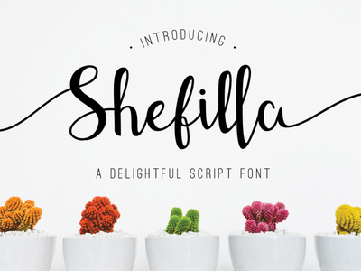 Shefilla - Handdrawn Script wedding rough quote delightful handwritten handlettering handwriting handdrawn script font