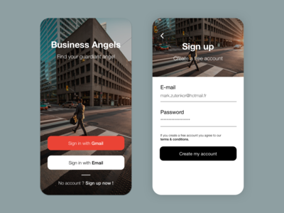 Sign In / Sign Up Page - Mobile UI/UX