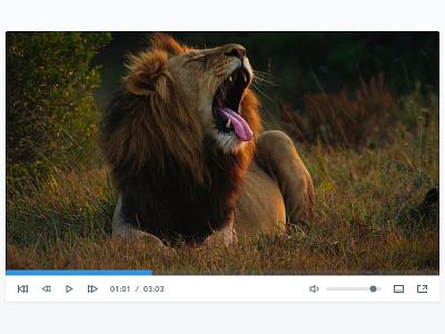 Plyr Light plyr media player vimeo youtube audio video html5