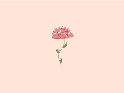 Flower illustration art rose gold rose clean plants illustrator type minimal flat typography branding vector design logo illustration first