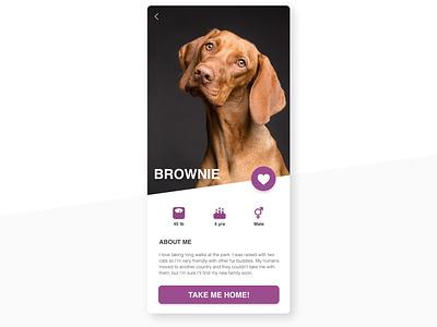 Daily UI 006 - User Profile vector uiux appdesign app ui dailyui user interface uidesign daily ui design