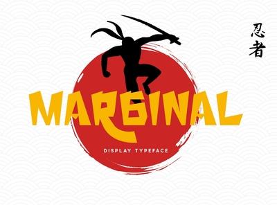 Marginal - Dislay Typeface