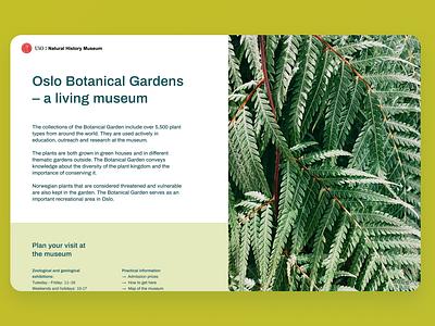 Oslo Botanical Gardens web branding typography colors minimalistic ui personal redesign concept website design webdesign plants photography redesign design