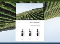 ANA WINE Winery Landing Page Concept (Website) Part 1