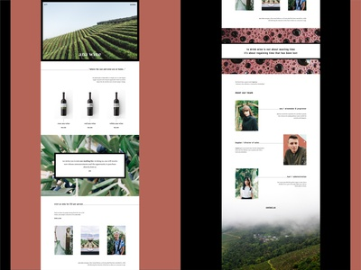 ANA WINE Winery Landing Page Concept (Full Website ) Part 4