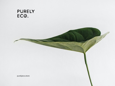 Purely Eco - Logo for an eco-friendly online store graphic logodesign store logo logotype online store online shop webstore ecofriendly ecologic ecology web illustration sketch logo vector graphic design mockup typography branding design