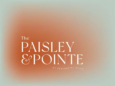 The Paisley & Pointe gradient ampersand paisley las vegas brand identity logo typography design branding