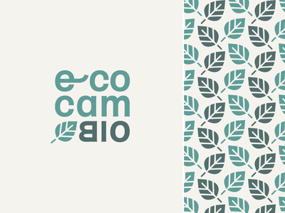 EcoCambio