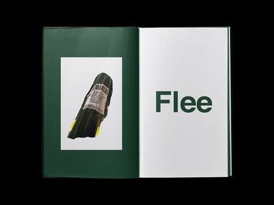 Flee - Art Book