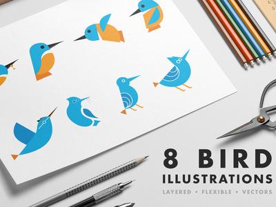 8 Bird illustrations