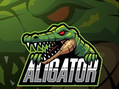 Alligator sport mascot logo design