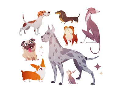 Set of dogs chihuahua dachshund illustration bright stickers pug character cartoon dog