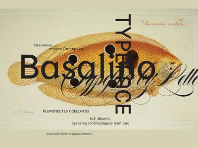 Basalino Typeface