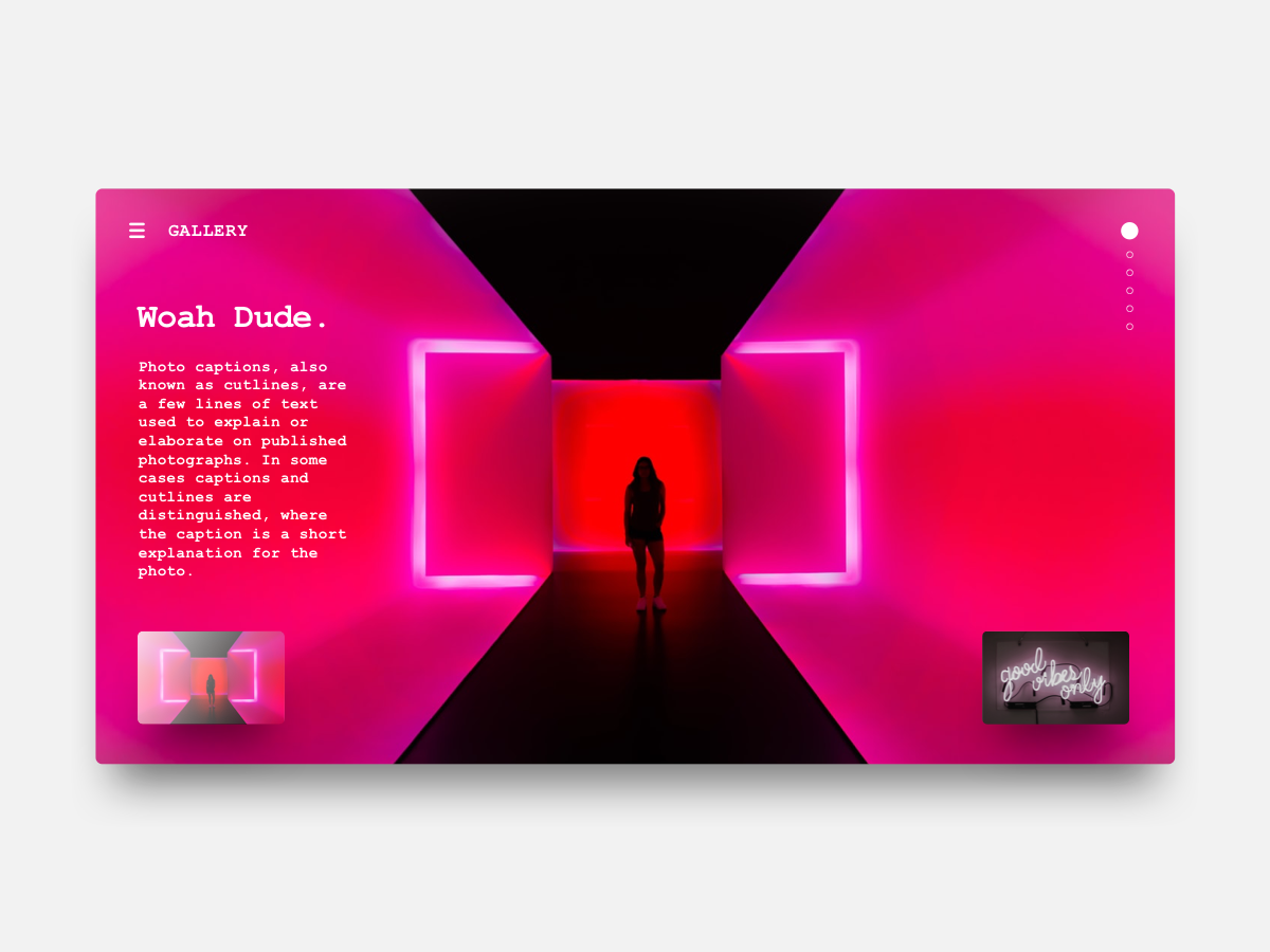 Gallery Viewer courier viewer photography photo gallery profile user web interface ux ui gradient neon clean card brand app visual design layout sketch