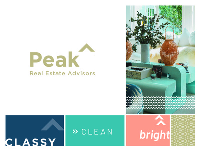 Peak Real Estate logo unused