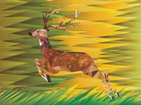 Deer Hop