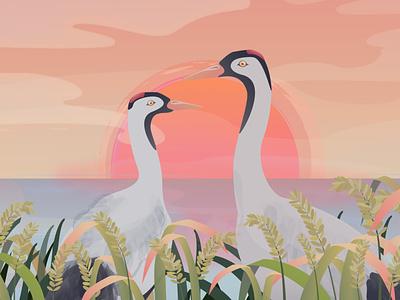 Return of the Cranes to Hamanoura character design mascot field rice sun sunrise sunset lake crane motion graphic japan 2d animation 2d illustration