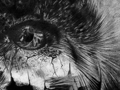 PETS future organic drawing pen crayon réalisme