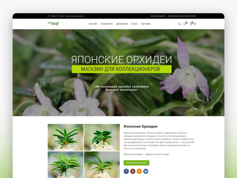 Sunleaf - Rare Japanese Neofinetias E-commerce Site webdesign design logo custom wordpress theme web design idsn ui design ecommerce wordpress orchid shop japanese orchid neofinetia