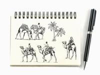 Camel Tour Sketch