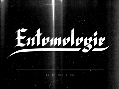 Entomologie grunge medieval dust grain paper texture ink caligraphy typography blackletter