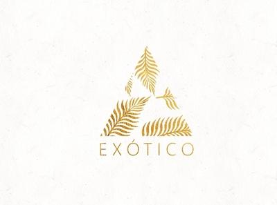 Logo design   Exótico