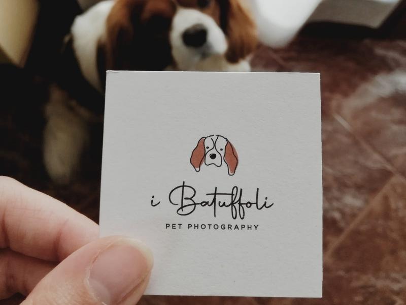 I Batuffoli pet photography logo design businesscard business card design business card typo dog logo pet illustration typography logo design logotype logo