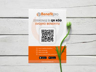 Flyer - BenefitPro