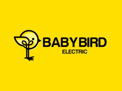 Baby Bird ❤️