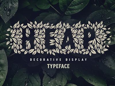 Heap — eco friendly organic font typography label leaves eco organic natural decorative logo typeface design lettering alphabet font
