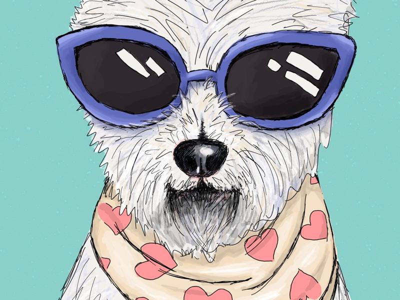 Cool Dog graphic design photoshop puppy pet illustration bright fun dog